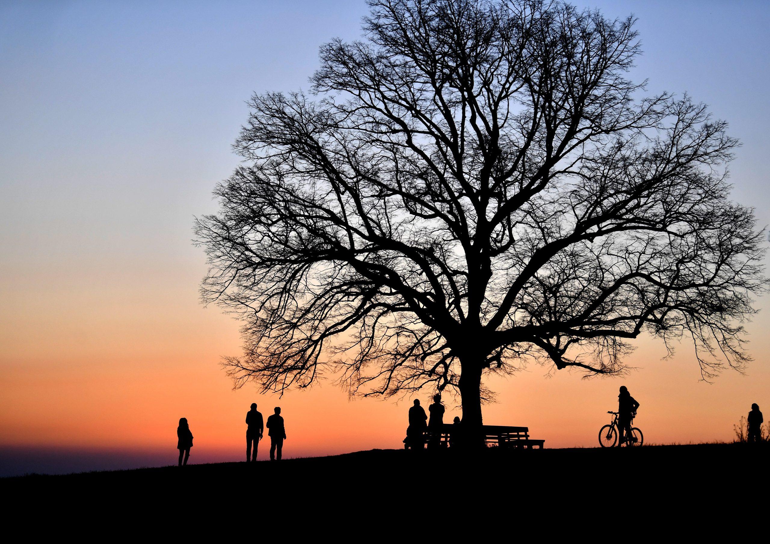 Besucher des Plainberges betrachten den Sonnenuntergang am Mittwoch, 8. April 2020. Im Zuge der Coronavirus-Ma§nahmen gelten AusgangsbeschrŠnkungen und Social Distancing.
