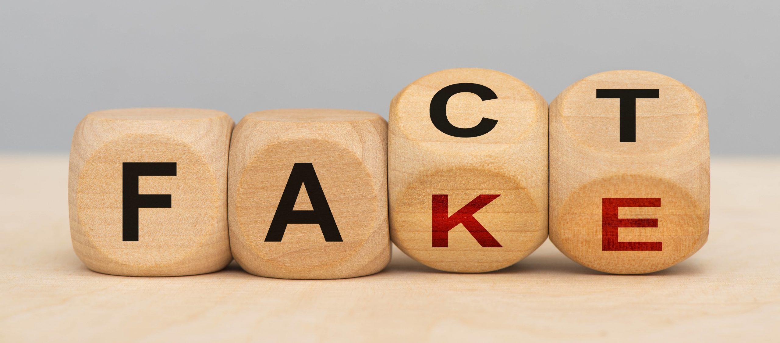 Fact und fake gedruckt auf Holzwürfel