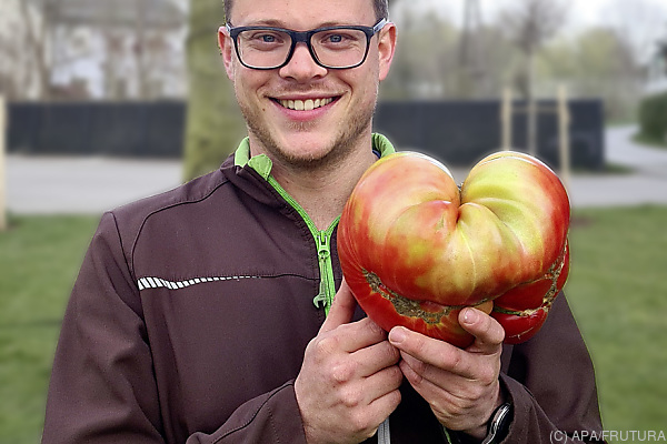 Auf dem Bild sieht man den Steirer Christoph Schieder mit der von ihm gezüchteten Tomate.
